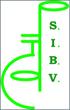 logoSIBV2