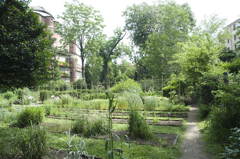 I percorsi dell orto botanico di brera